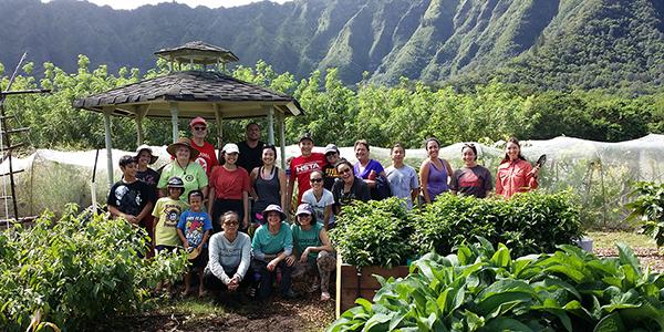 link to JoAnn Tsark: Serving Native Hawaiians in Public Health
